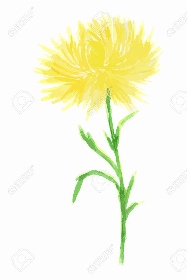 elegant flower clipart free