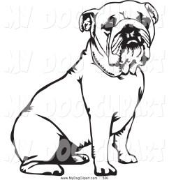 1024x1044 english bulldog clipart black and white [ 1024 x 1044 Pixel ]