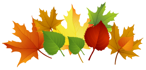 small resolution of 3969x1910 fall leaves transparent background clipart