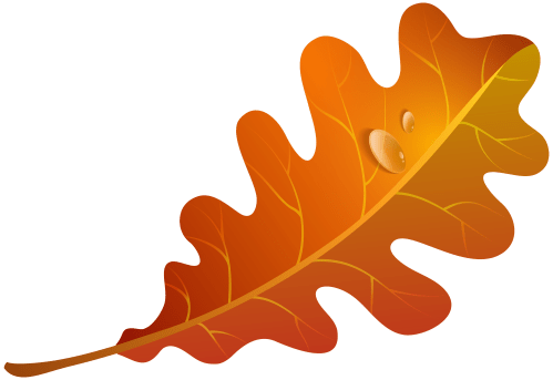 small resolution of 5000x3439 edit and free download fall orange leaf png clipart image