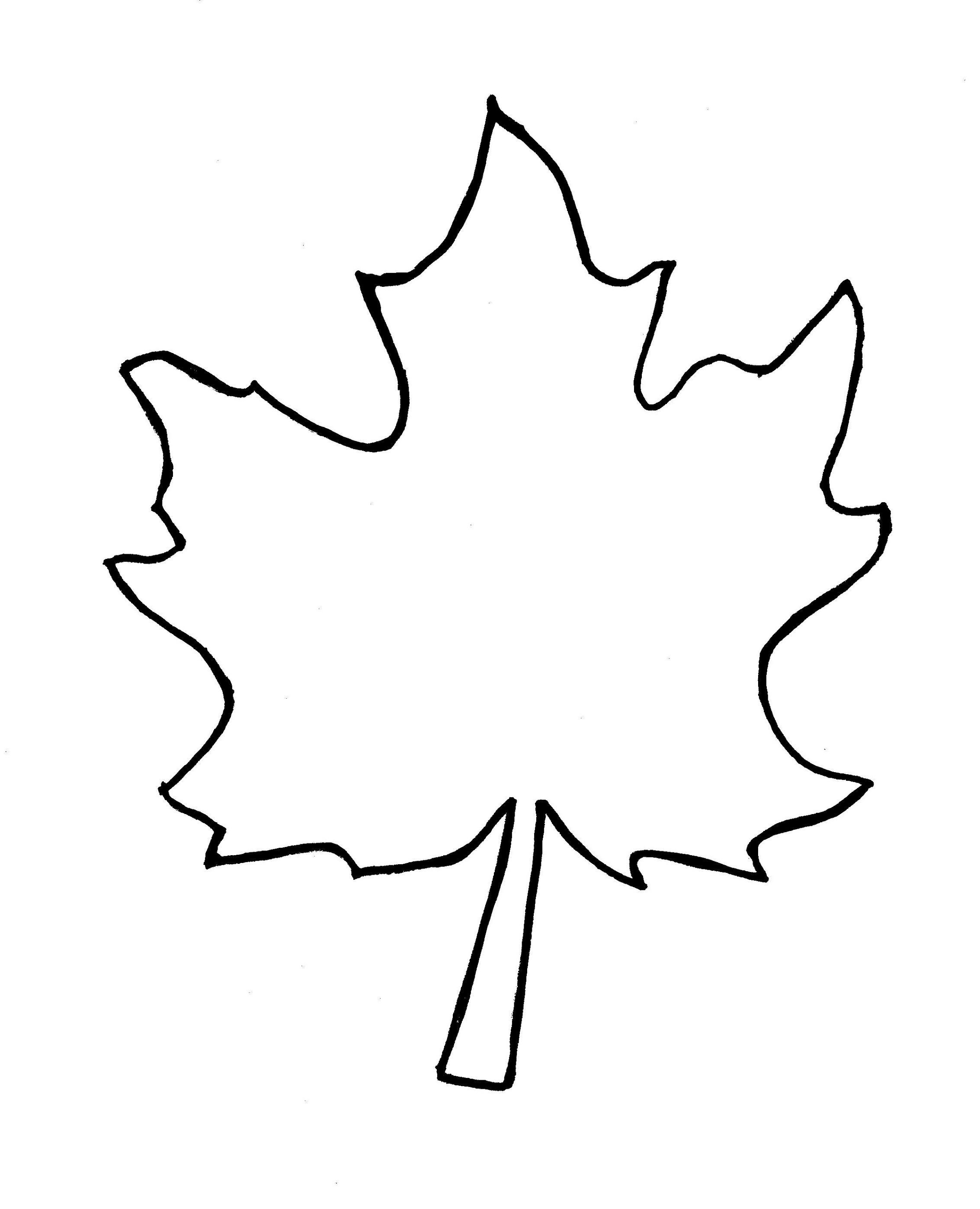 Fall Leaf Outline