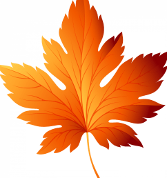 3000x3000 autumn leaf transparent png clip art image fall leaf clip art [ 3000 x 3000 Pixel ]