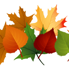 4153x1988 fall leaves fall leaf clipart no background free clipart images 2 [ 4153 x 1988 Pixel ]