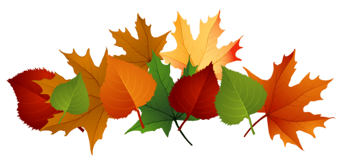 small resolution of 4153x1988 fall leaves fall leaf clipart no background free clipart images 2