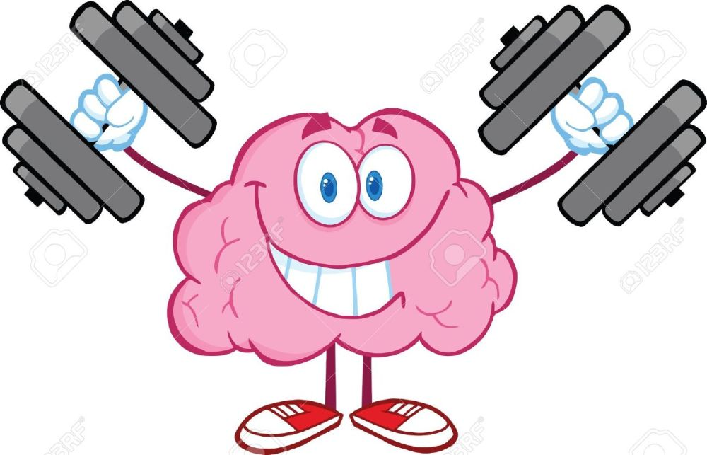 medium resolution of 1300x836 brains clipart brain exercise