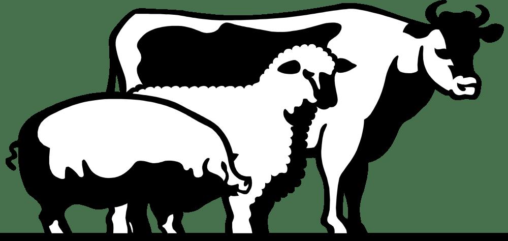 medium resolution of 2860x1356 4 h livestock of clipart
