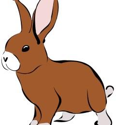 822x999 top 73 rabbit clip art [ 822 x 999 Pixel ]