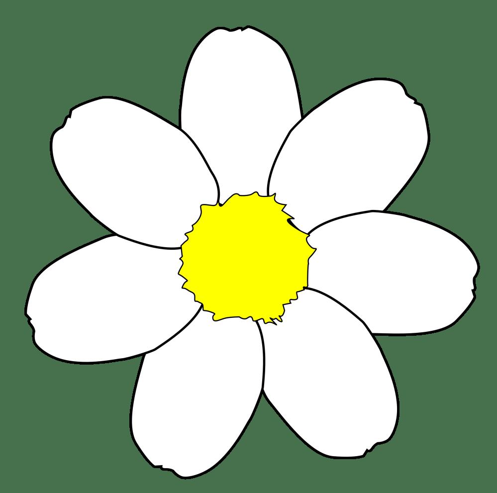medium resolution of 3420x3391 daisy clipart flower outline