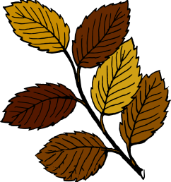 930x1000 free fall leaves clipart [ 930 x 1000 Pixel ]