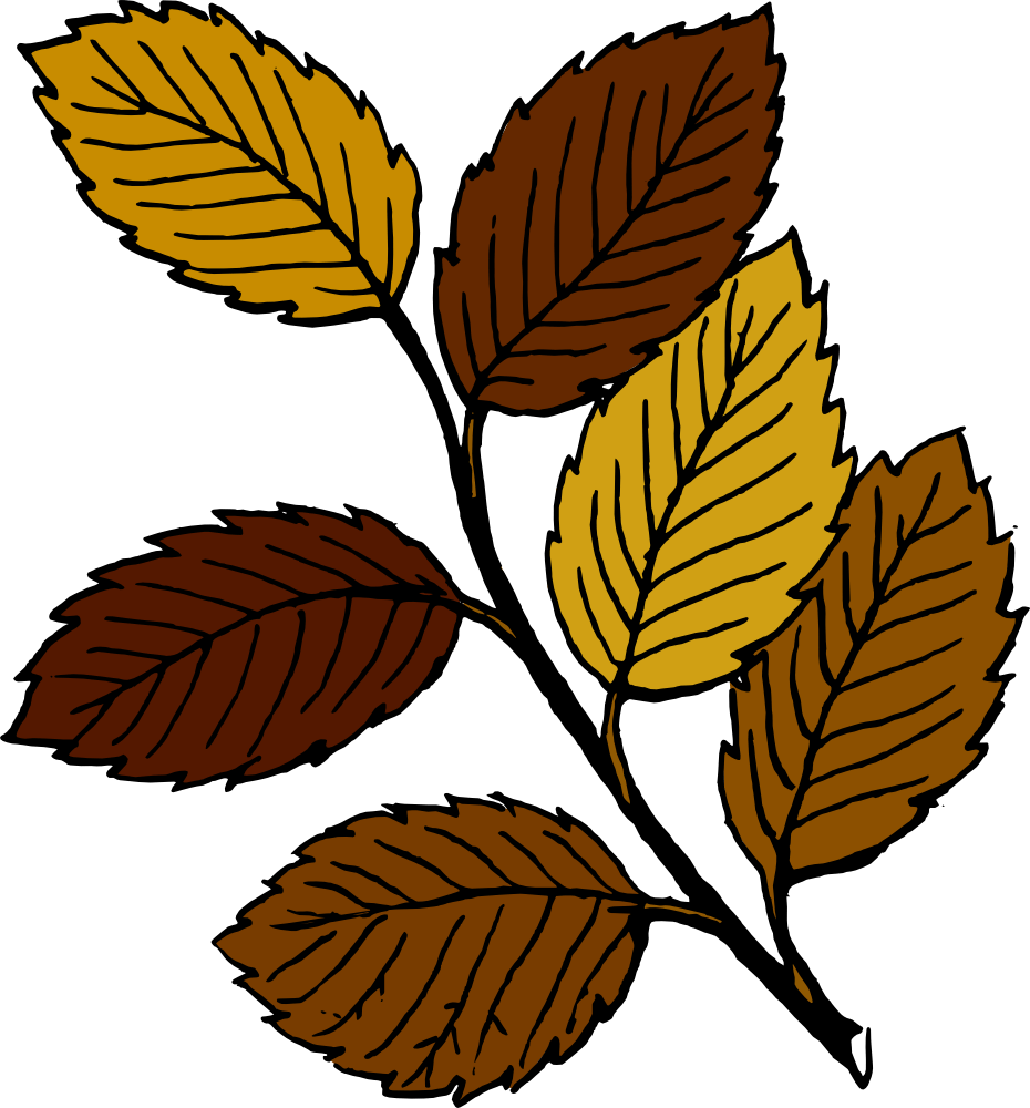 medium resolution of 930x1000 free fall leaves clipart