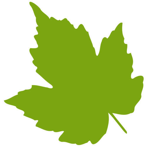 small resolution of 900x900 green clipart falling leaves