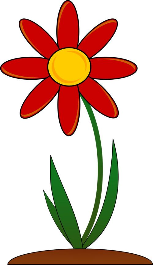 small resolution of 736x1274 floral clipart transparent background