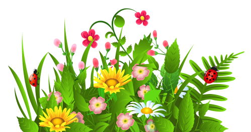 small resolution of 6287x3328 cute grass and flowers png clipartu200b gallery yopriceville