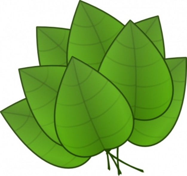 free nature clipart free