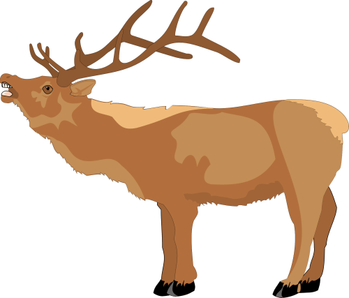 small resolution of 1969x1683 reindeer clipart