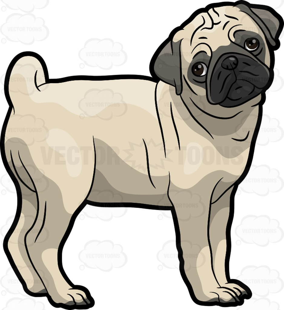 hight resolution of 939x1024 free pug puppy clipart