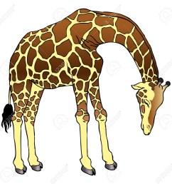 1300x1271 cartoon drawing of a giraffe cartoon giraffe clipart free [ 1300 x 1271 Pixel ]