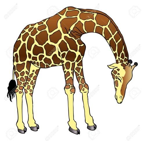 small resolution of 1300x1271 cartoon drawing of a giraffe cartoon giraffe clipart free