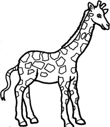 Black And White Giraffe Coloring Page