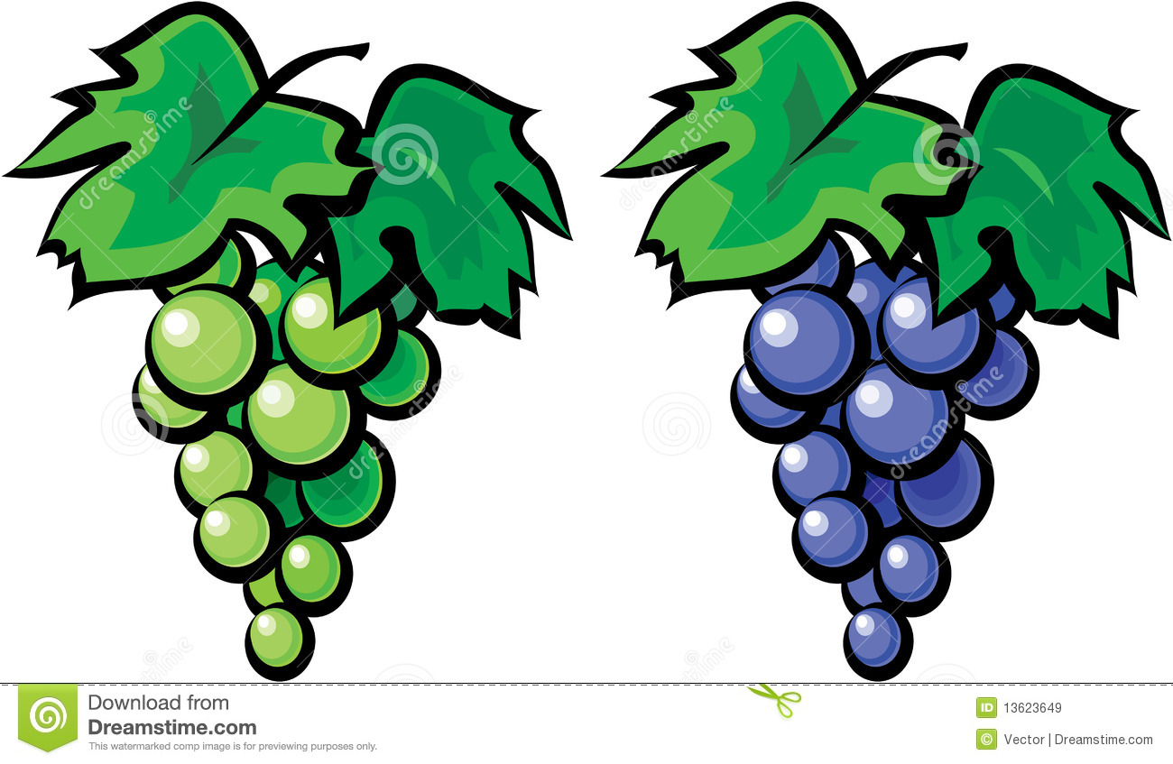 hight resolution of 1300x847 grape clipart grape tree