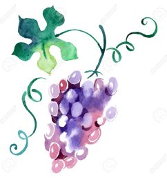 1300x1300 11 439 vineyard stock illustrations cliparts and royalty free [ 1300 x 1300 Pixel ]