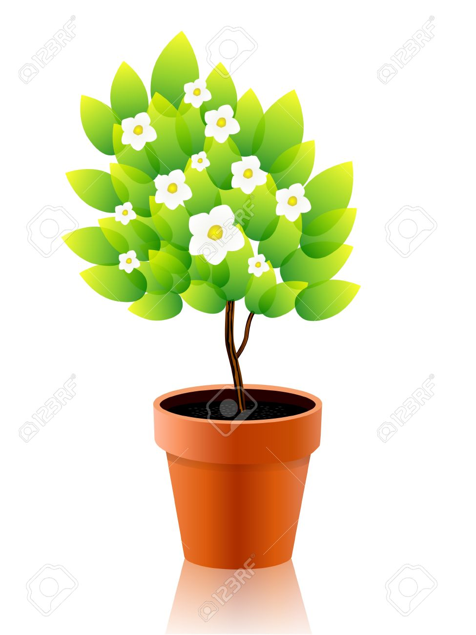 medium resolution of 975x1300 pot plant clipart flower growing