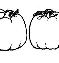 1920x689 black and white pumpkin clip art fun for christmas [ 1920 x 689 Pixel ]
