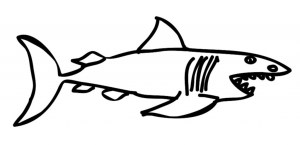 shark draw drawing clipart simple line clip step cool sea clipartmag