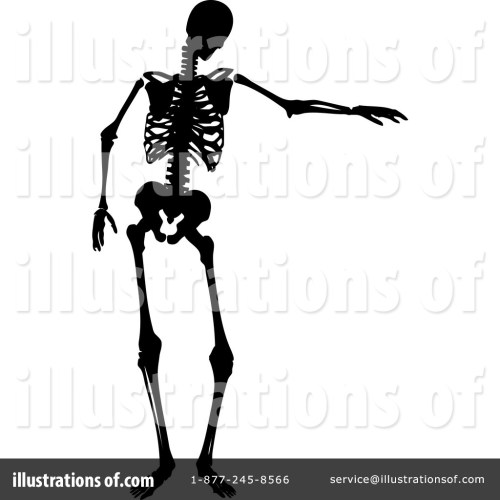 small resolution of 1024x1024 skeleton clipart