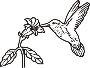 hummingbird drawing line simple tattoo flower silhouette sketch outline drawings hummingbirds flowers birds drawn animals animal clipartmag getdrawings sketches tattoos
