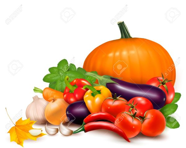 vegetables free