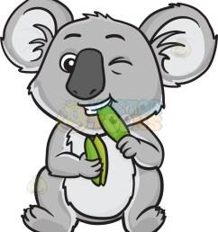 907x1024 a koala bear eating leaves [ 907 x 1024 Pixel ]