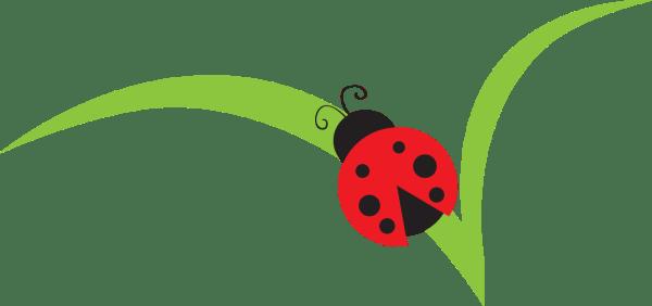 ladybugs clipart free