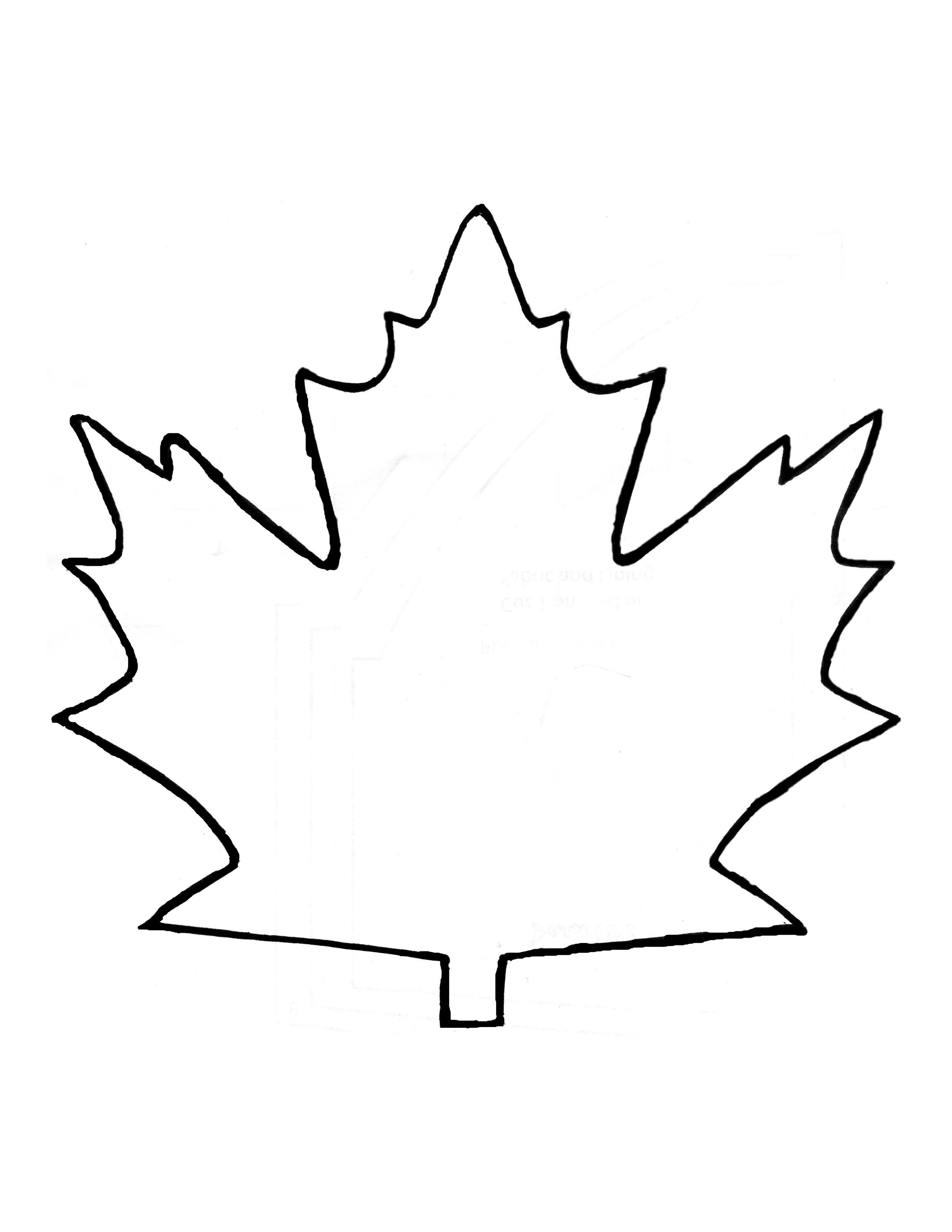 Leaf Outline Images