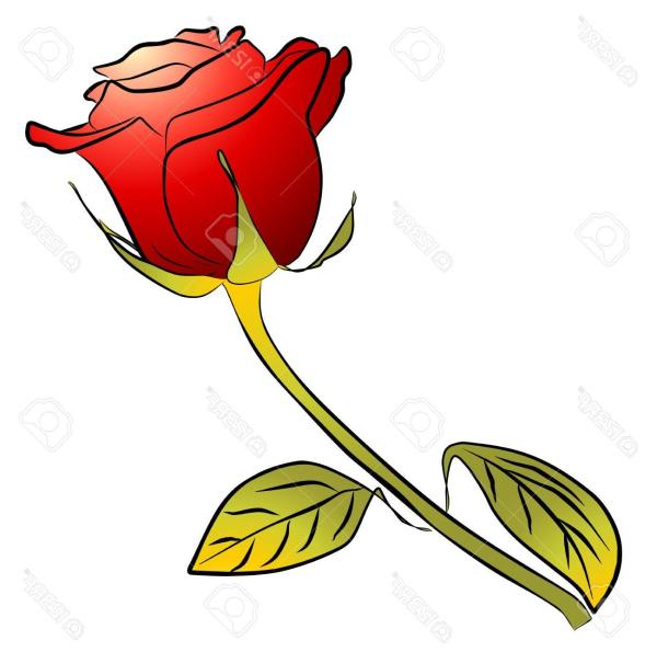Long Stem Rose Clipart Free
