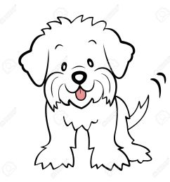 1300x1300 puppy cut maltese isolated royalty free cliparts vectors  [ 1300 x 1300 Pixel ]