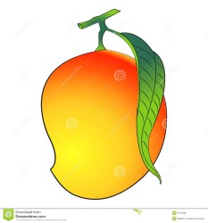 mango clipart background illustration pile vector clipground clipartmag cliparts isolated