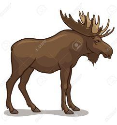1300x1300 moose clipart realistic animal [ 1300 x 1300 Pixel ]