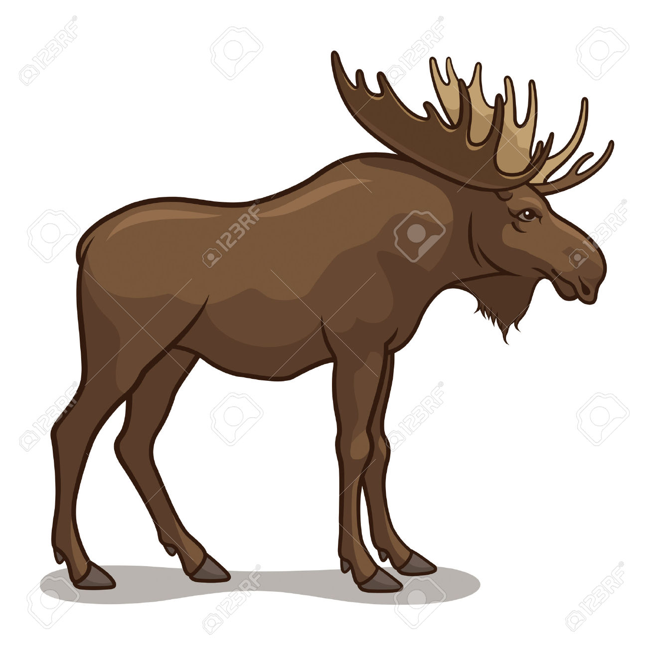 hight resolution of 1300x1300 moose clipart realistic animal
