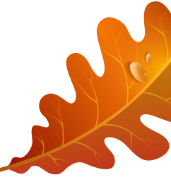 5000x3439 leaves clipart winter leaves [ 5000 x 3439 Pixel ]