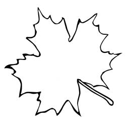 outline oak leaves tree clipartmag