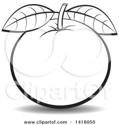 orange clipart illustration lineart royalty vector perera lal clipartmag lime lemon navel holding hand