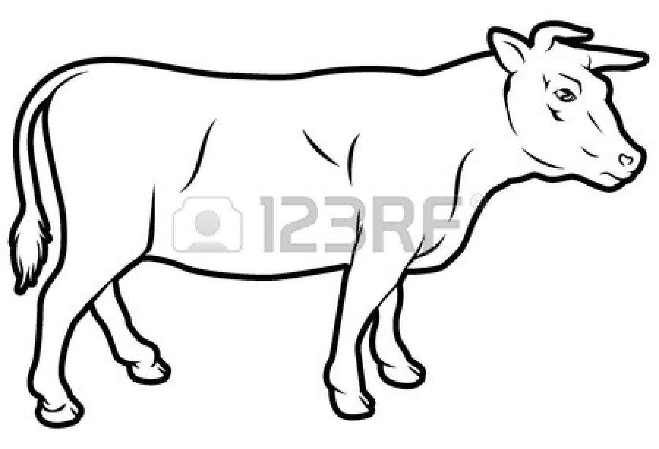 Outline Of A Cow
