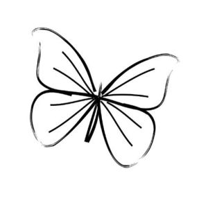 butterfly outline drawing tattoo clipartmag