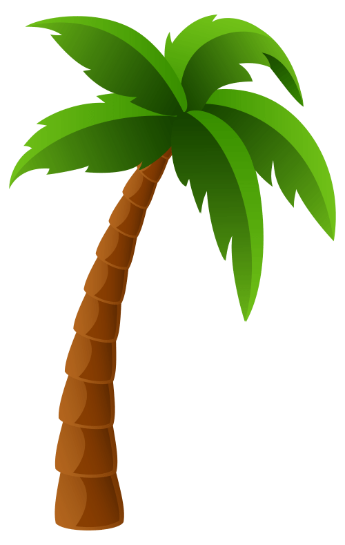 small resolution of 6139x9697 free clipart images of palm trees wallpaper images