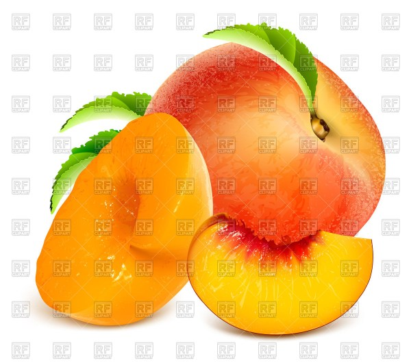 peaches clipart free