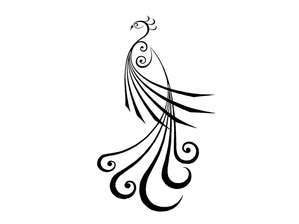 Peacock Clipart Black And White