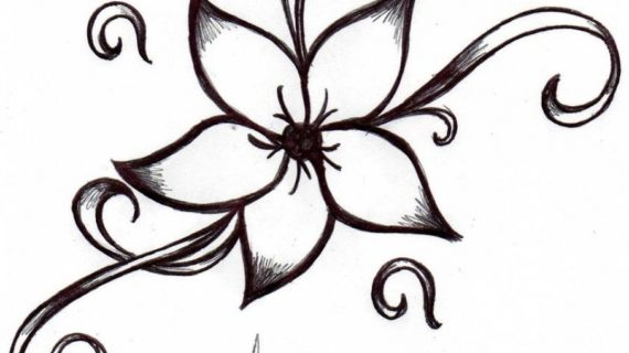 pictures of flower drawings