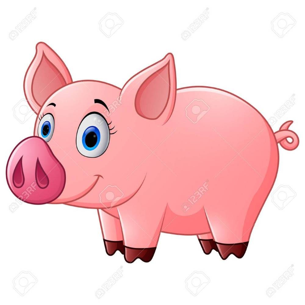 medium resolution of 1300x1300 cute baby pig cartoon stock photo picture and royalty free image