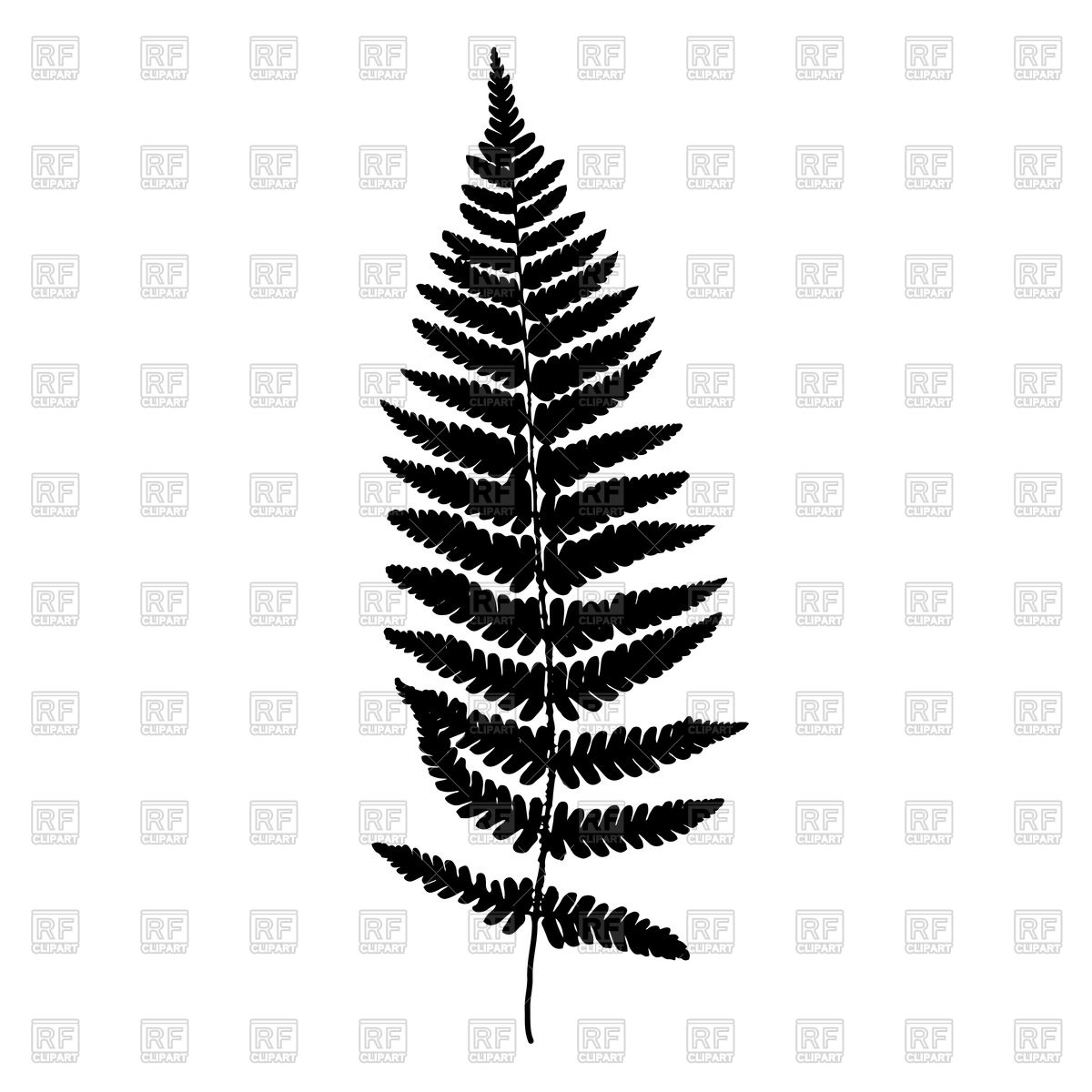 hight resolution of 1200x1200 fern leaf royalty free vector clip art image